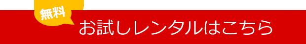 dvd_anzen11